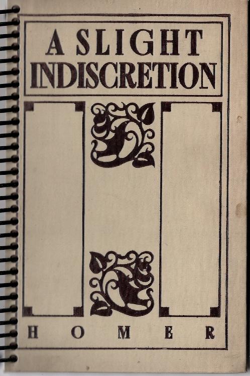 A Slight Indiscretion Pocket Book Journal