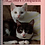 Thumbnail: The Cat Lover's Companion Book Journal with Doily