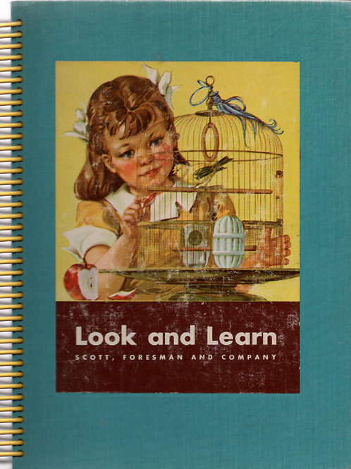 Look and Learn Book Journal