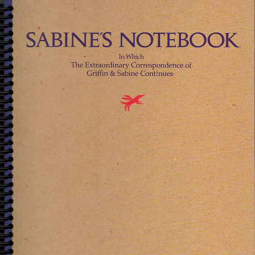 Sabine's Notebook Desk Journal