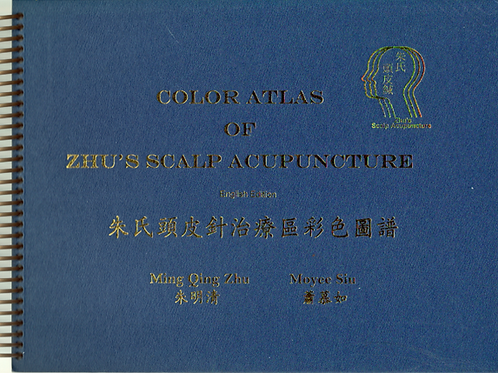 Zhu's Scalp Acupuncture Book Journal