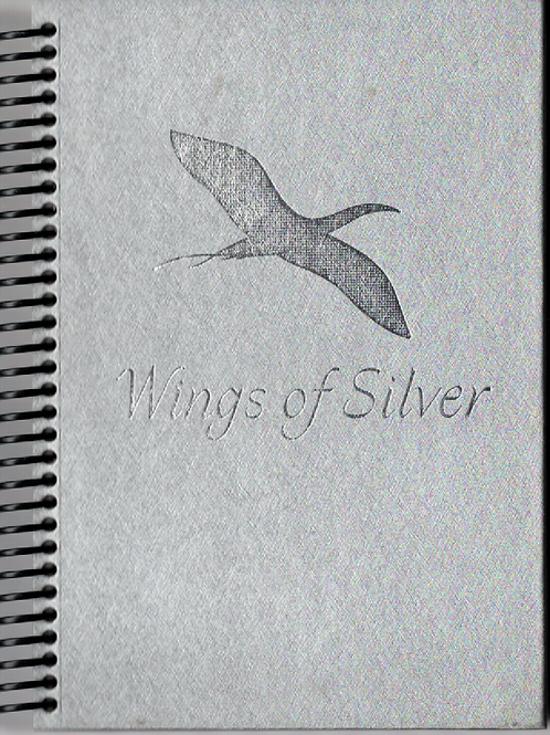 Wings of Silver Pocket Book Journal