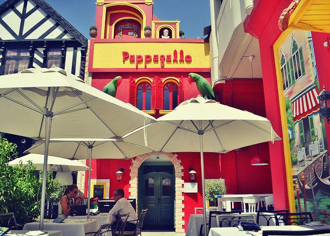 Pappagallo 2.jpg