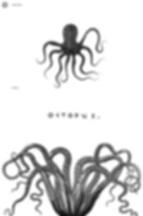 NewOctopusBW.jpg