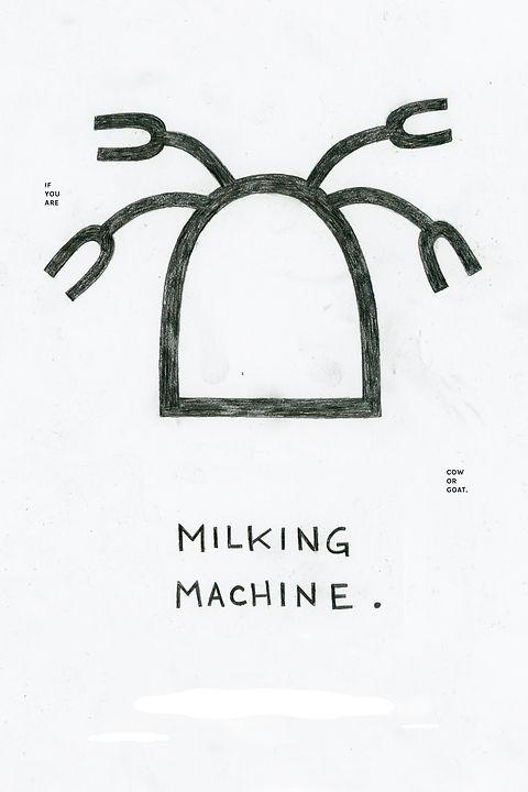 NewMilkingR.jpg