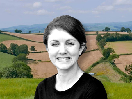 Podcast: Elizabeth Wainwright on Local Politics, Climate Change & the Need for 'Generalists'.