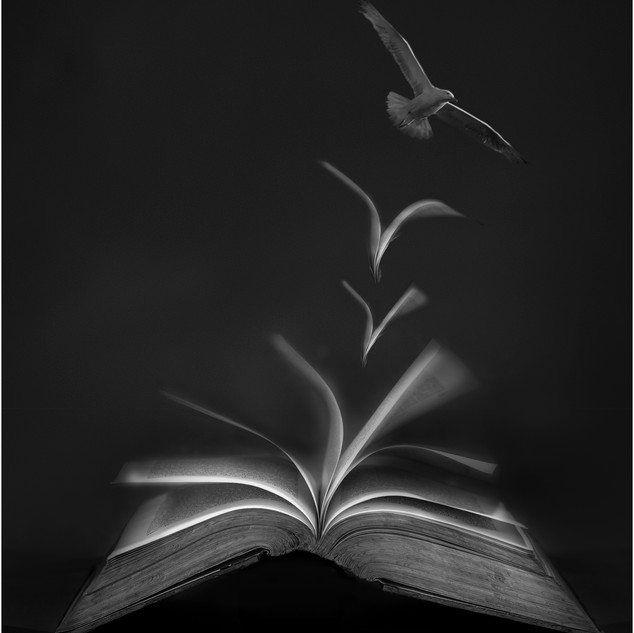 29. Flight of Inspiration by Mark Battista