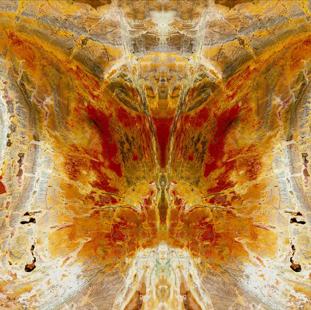 5. Metamorphosis by George Fellner