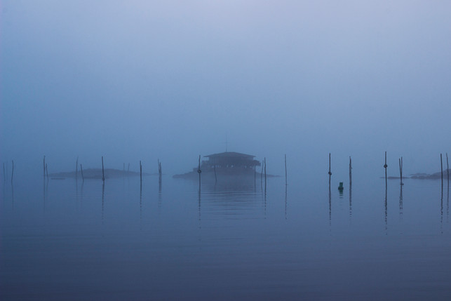 House on the Water - Evan Hamilton