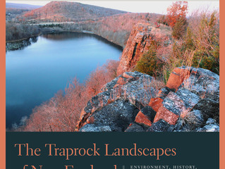 Explore New Haven's Extraordinary Traprock Landscape Virtually with NHM