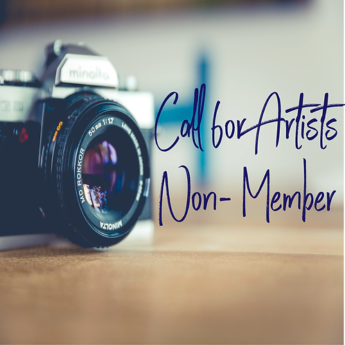 Non-Member Call for Artists Posting
