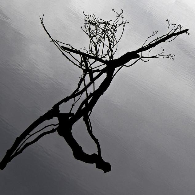 50. The Dancer by Marcus Maronn