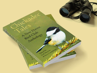 Chickadee Tales: An Anthology of the New Haven Bird Club at the Pardee-Morris House