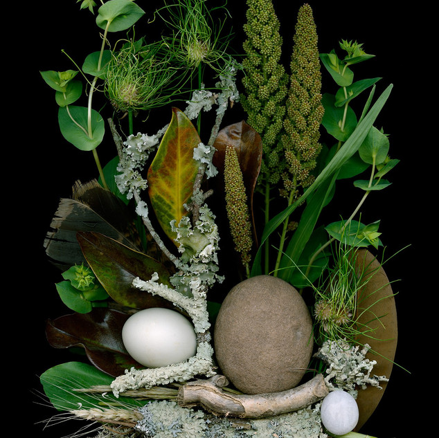 2. Gleanings, Farm and Field by Ellen Hoverkamp
