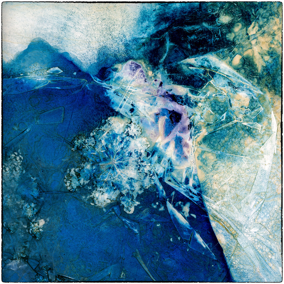 Cyano-Ice - Susanne Brandt, Honorable Mention