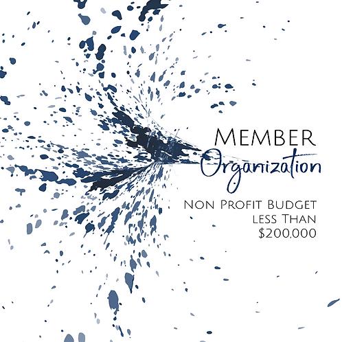 Member Organization - Non Profit