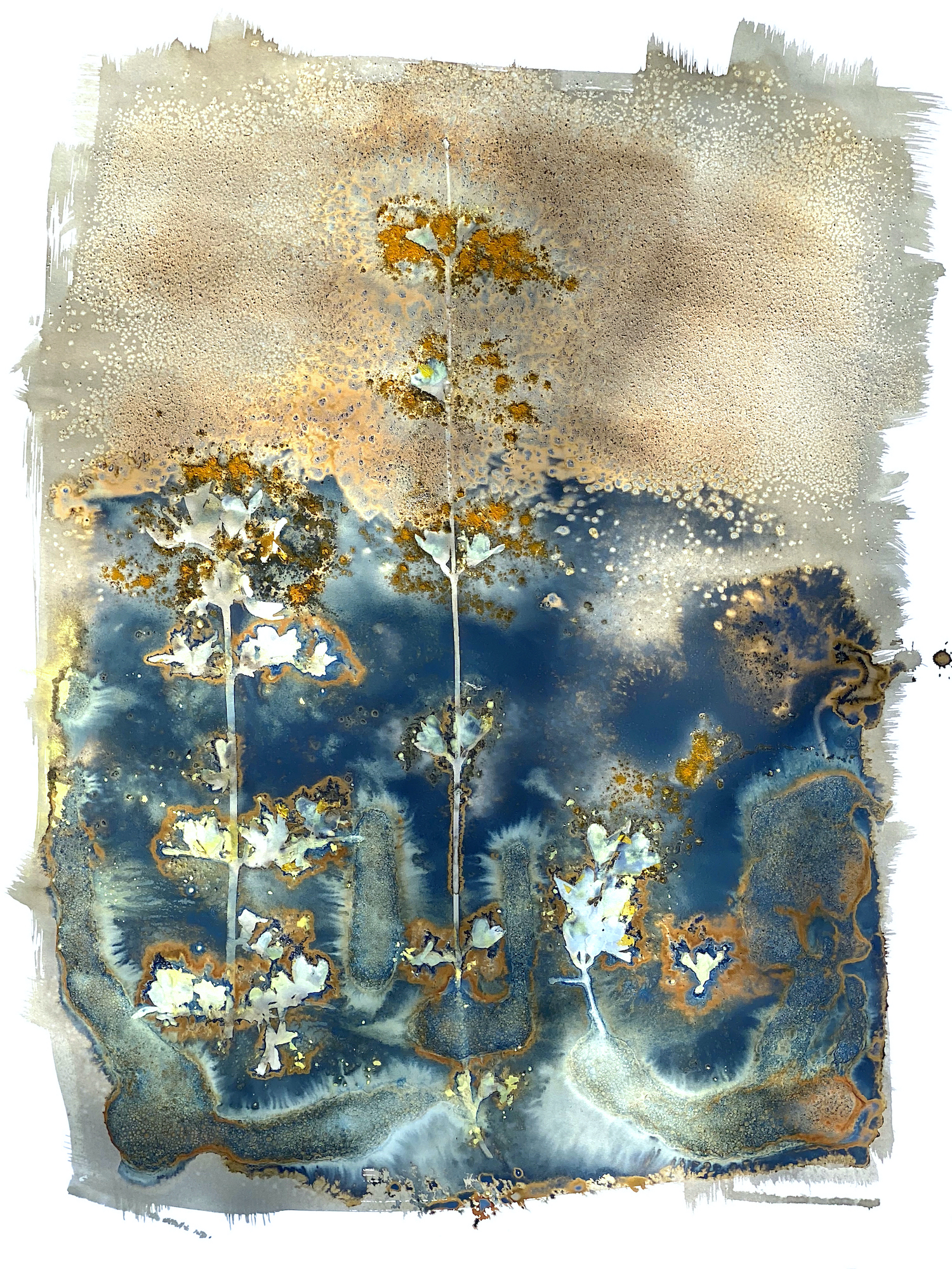 Honorable Mention - Forsythias at Sea