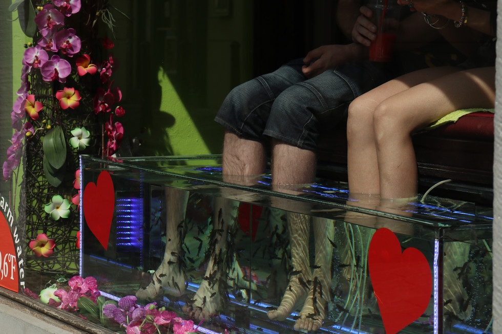 City Fish Feet - Kurt Suydam