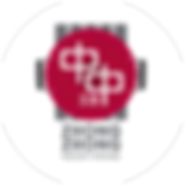 ZZ_Logo copy.png