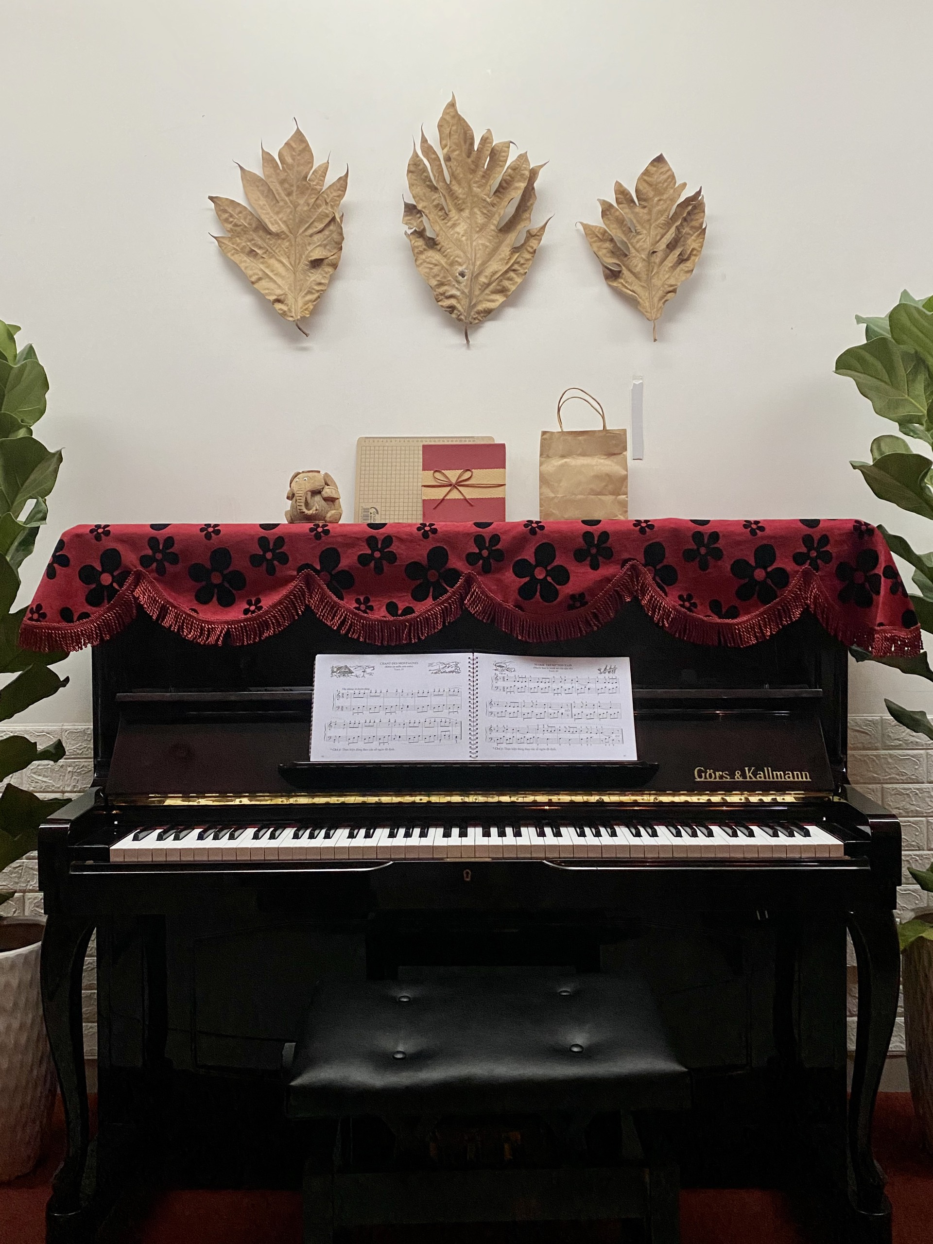 Thầy hay chơi Piano ở đây. Âm nhạc luôn gắn liền với phim ảnh.