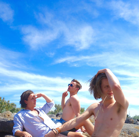 nude footy players, wil king, patrick cook, james hardy, nude calendar