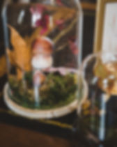 2017-11-18-bouchard-aine-vente-vin-JJ-62