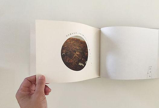 stgiga-book06.jpg