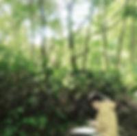 maiko-profaile.jpg