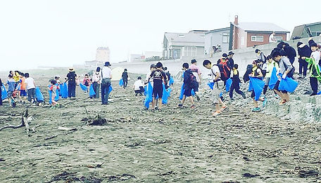 beachcrean15.jpg