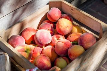 peaches-southern keep (1).jpg