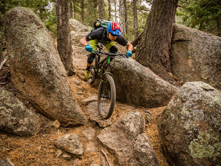 Linear Revolutions : Mountain Biking and my mind