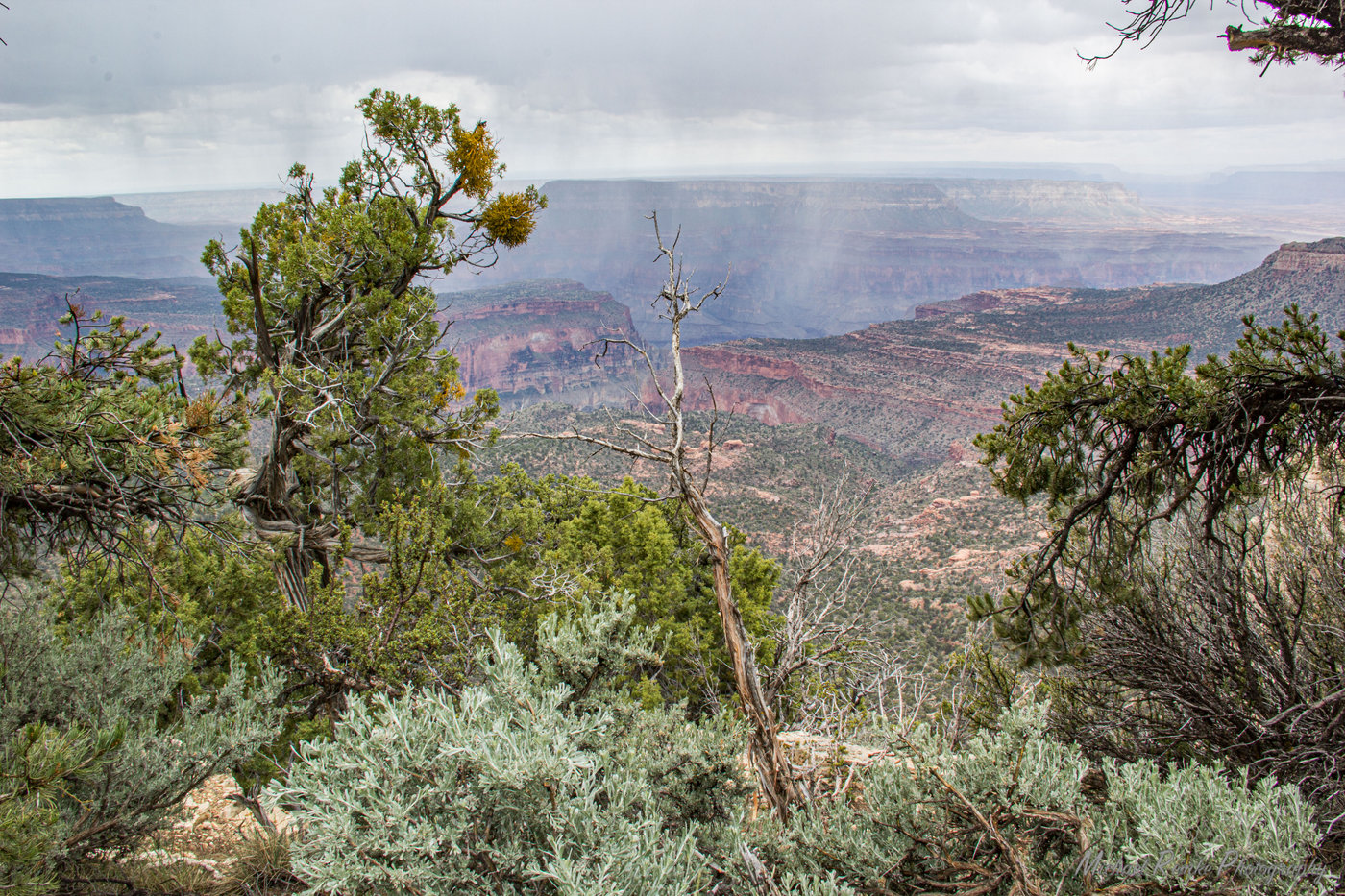 canyon_storm.JPG