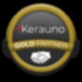 Gold Partner Badge.png