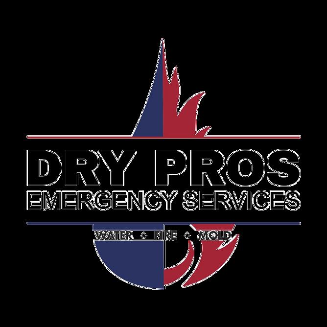 DryProsLogo no background.png