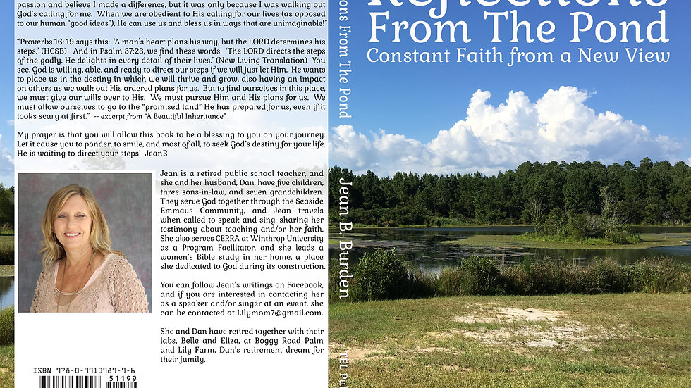 Reflections from the Pond: Constant Faith from a New View