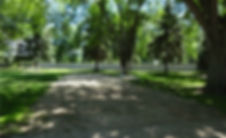 DSC00542a.jpg