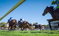 Racing & Wagering Western Australia
