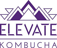 elevate_newlogoWEB.jpg