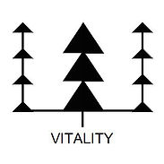 VITALITY | STRENGTH WITHIN