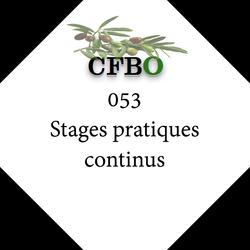 053 Stages pratiques continus