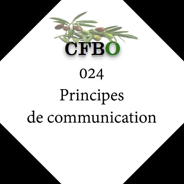 024 Principes de communication