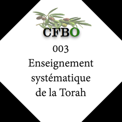 003_Enseignement_systématique_de_la_Torah