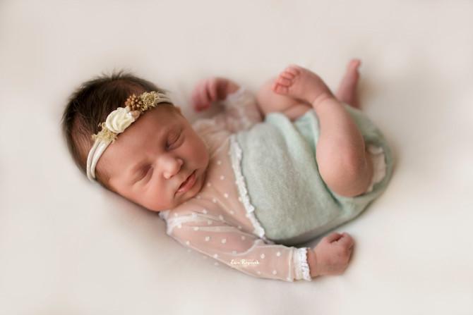 Baby Wren. Newborn Photography in Fleet.