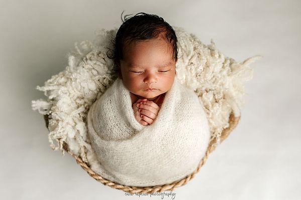 family photos and newborn photos near me