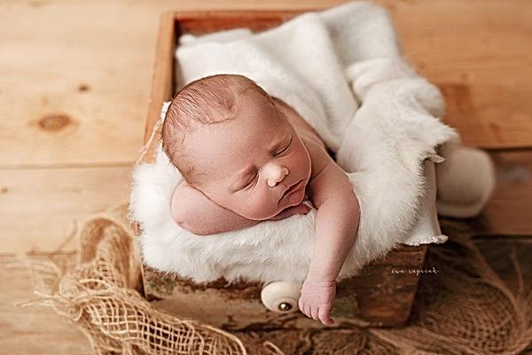 newborn photos near me