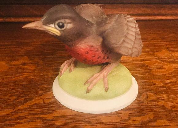 Baby Robin #437