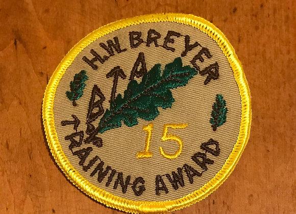 Vintage Boy Scout Patch H. W. Breyer Training Award