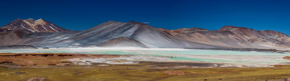Salar de Talar - Atacama - Chile