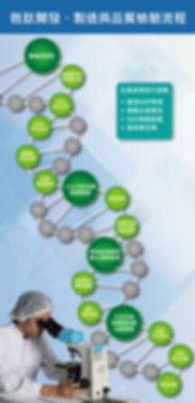 胜肽開發檢驗流程-01.jpg