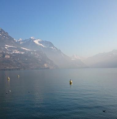 lake-682571_960_720.jpg
